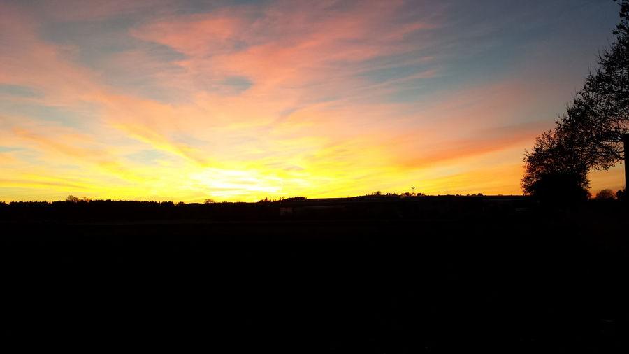 First Eyeem Photo Tree Sunset Silhouette Sky Landscape Cloud - Sky