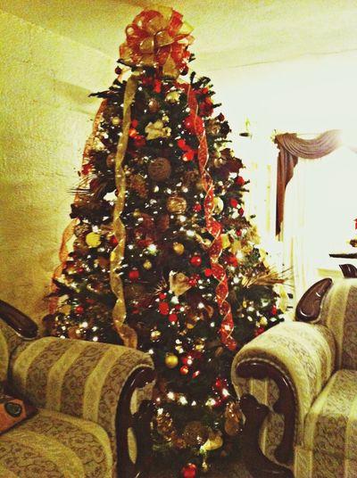 La Navidad llego a casa