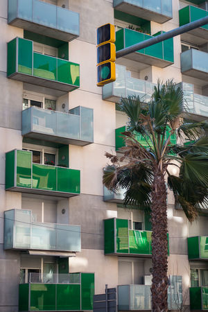 City Traffic Lights Building Traffic Signals Green Color Green Apartment Skyscraper Residential Building Outdoors Architecture Palm Tree Building Exterior Tree Built Structure No People Outdoors Day City