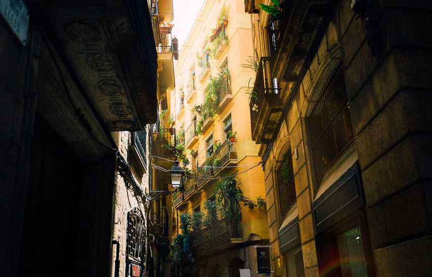35mm Barcelona Street Light VSCO Alley Architecture Balkon Building Building Exterior Built Structure City Day Direction House Low Angle View Narrow Nature No People Outdoors Residential District Street Sunlight The Way Forward Town Transportation Summer Exploratorium