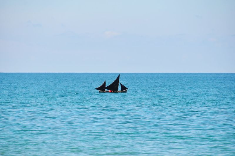 Black sails Pirates Sea Water Real People Horizon Over Water Scenics Nature Waterfront Beauty In Nature Outdoors Day Tranquility Tranquil Scene Blue Men One Person Clear Sky Sky People