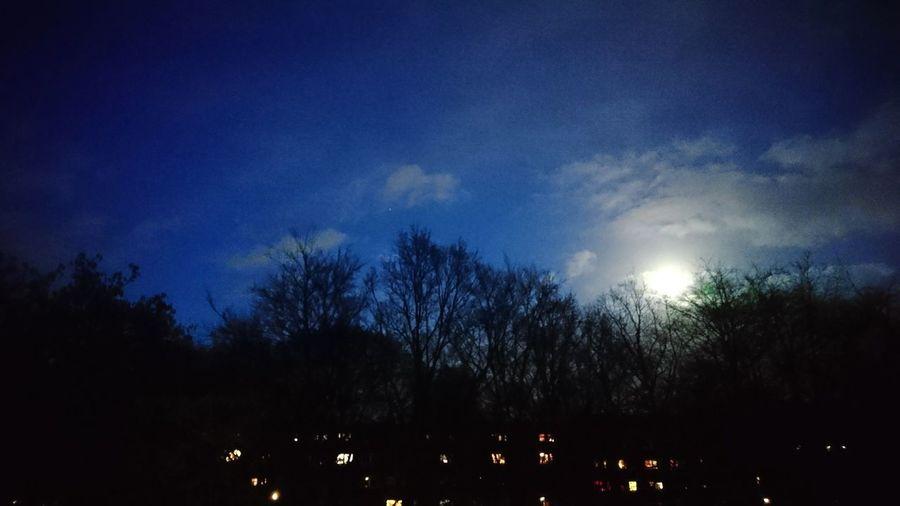 Moon above Hamburg-Barmbek. · Hamburg Germany Hh 040 Barmbek Trees Lights City Lights Moon Clouds Darkness Night Blue
