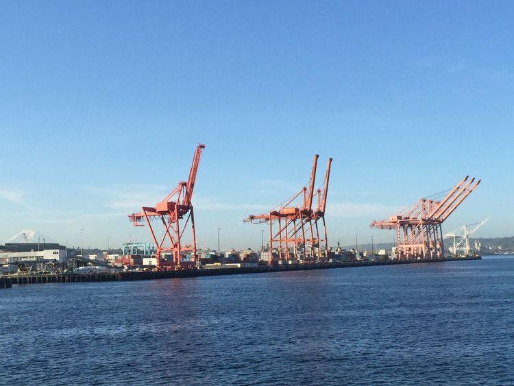 Dockside Ferry Ferry Passengers Maritime Port Of Seattle Seattle Seattle Skyline Seattle, Washington Sunrise Washington Ferry