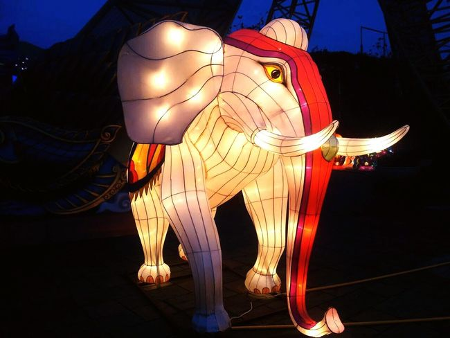 My Best Photo 2015 Sculpted Traditional Festival Chinatown Paper Lantern Chinese Lantern Festival Powder Paint Lantern Ballooning Festival Traditional Dancing Diya - Oil Lamp Diwali Bauble Carnival Religious Celebration Traditional Culture Hinduism Chinese Culture Traditional Ceremony Firework Balinese Culture Festival Chinese Lantern Place Of Worship Buddha Oil Lamp Jack O Lantern Holi Henna Tattoo Sculpture Stories From The City