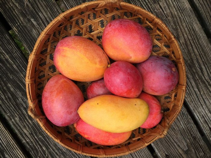 Ripe mangoes Mangoes Ripe Fruit Fruit Still Life Woven Baskets Wood Basket Florida Fruit Fruit Basket