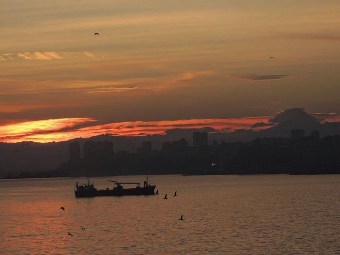 Good Morning Sunrise Morning Sunrise Sunrise_Collection Sunrise And Clouds Sunrise Silhouette Sunrise - Dawn Silouette & Sky Sun Reflection On Water Mountain Range Birds Flying Low Ship Bay Of Valparaiso Sunrise From My Office Window