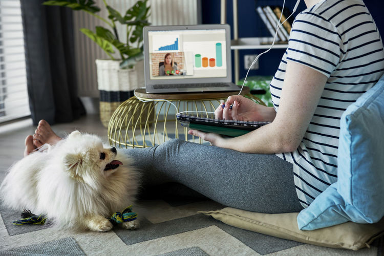 Rear view of woman with dog sitting in laptop