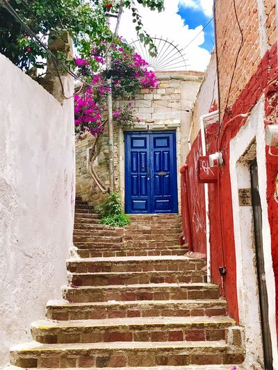 Door Mexico Guanajuato, México Blue Sky And Clouds Summer Vibes Blue Blue Sky Blue Door Flower First Eyeem Photo EyeEmNewHere