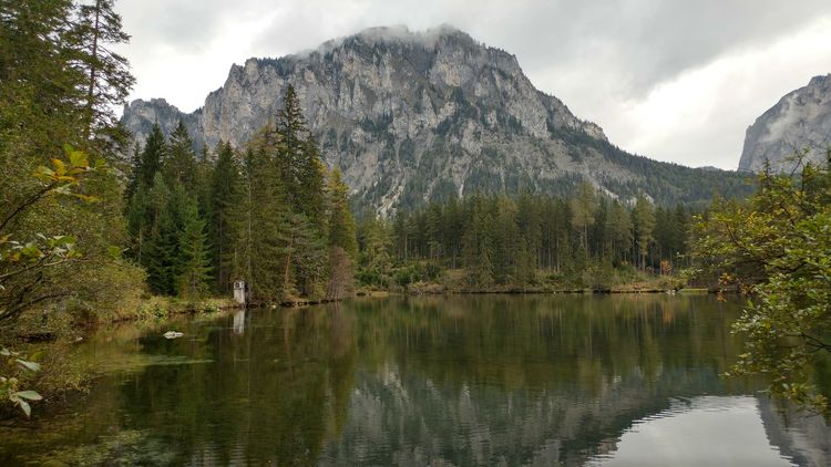 Tree Water Tranquil Scene Mountain Tranquility Scenics Lake Reflection Forest Beauty In Nature Nature Growth Non-urban Scene Sky WoodLand Cloud - Sky Majestic Cloud Waterfront Calm Austria Alpes