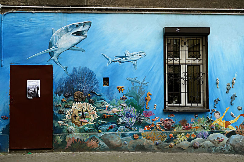 Day Imaganiation No People Outdoors Steet Art In Wrozaw Undersee Life In Street Art Underwater Magic Wonders Under Water