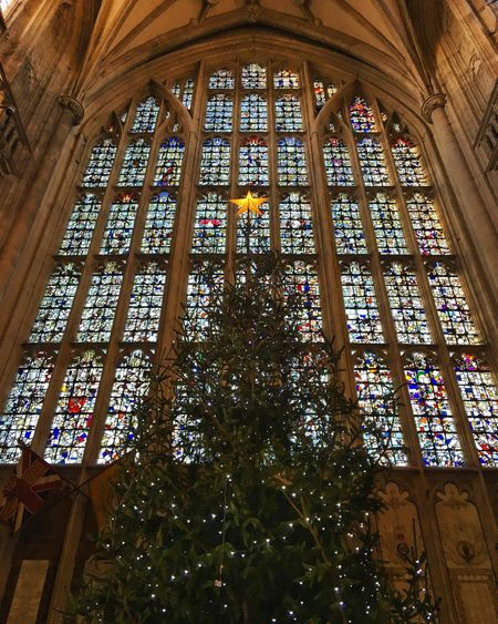 Winchester Winchester Cathedral Window Architecture Travel Destinations Archidaily Archilovers Christmas Lights Christmas Tree Christmas