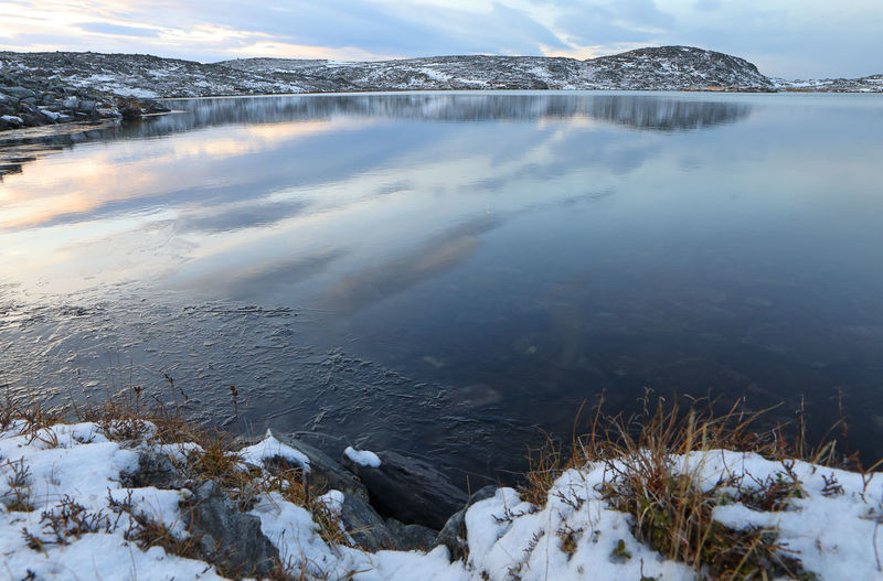 Scenic View Of Frozen Lake By Snow Covered Plants