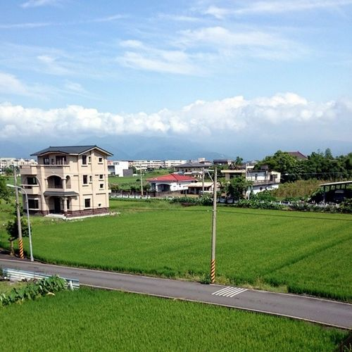 Ricepadifields Yilan Taiwan