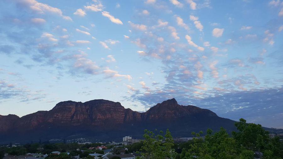 Tree Mountain Blue Sky Landscape Cloud - Sky