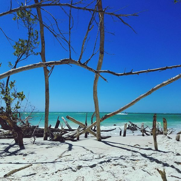 Whitney Beach Beer Can Island Florida Tropical