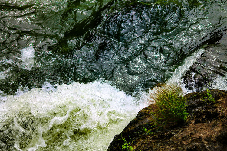 Violent Waters DANGEROUS WATERS Nature Beauty In Nature Water River Rapids Backgrounds Looking Down A Cliff Low Angle View Scenics Growth Day Forest Wild Nature