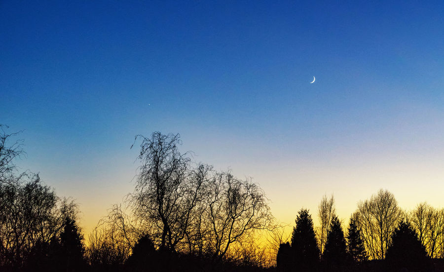 Moon Moon Light Moon Shots Moon_collection Moonlight Moonphotography Moonshine Star Star And Moon Stars Sunset Sunset #sun #clouds #skylovers #sky #nature #beautifulinnature #naturalbeauty #photography #landscape Sunset Silhouettes Sunset_collection Sunsetlover Tree Trees Trees And Sky What's On The Roll