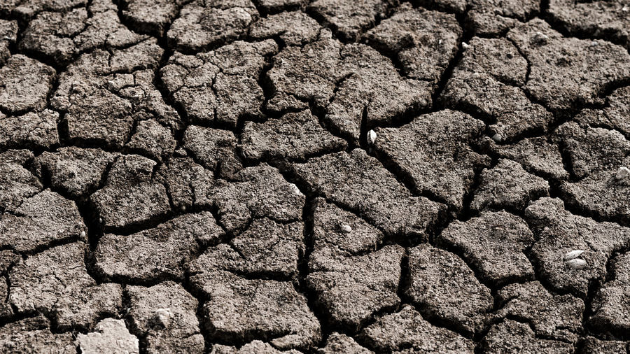 Arid climate Abstract Arid Arid Climate Backgrounds Barren Barren Landscape Clay Close-up Crack Cracked Cracked Earth Day Earth Full Frame Nature Nature Nature Destroyed No People Outdoors Rainless Sterile Texture