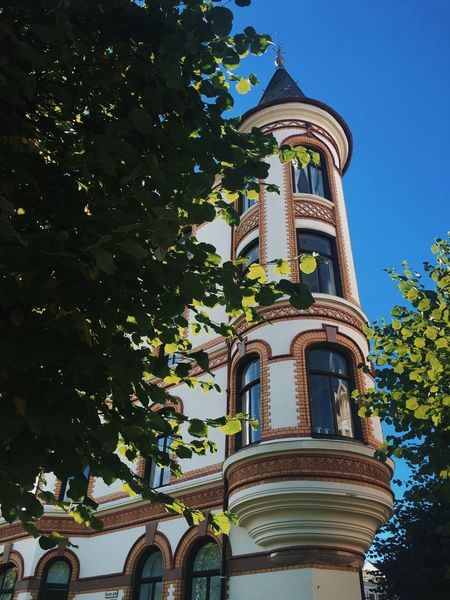 Built Structure Architecture Low Angle View Tree Window Blue Tower Outdoors Day Tall - High Arch Frogner Oslo