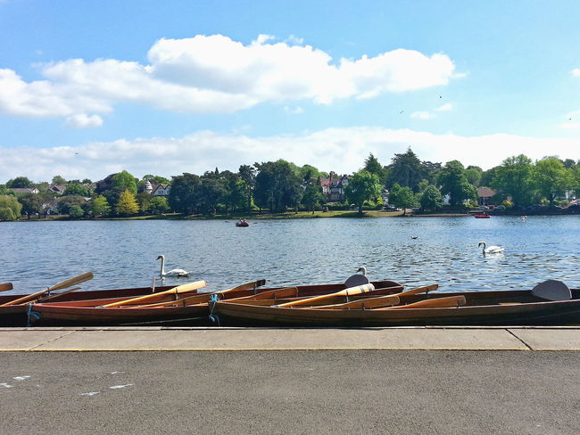 Tethered boats and few swans on the lake in Roath Park, Cardiff, UK. Tourism attraction. Beauty In Nature Boat Canoe Cardiff Family Holiday Lake Leisure Activity Nature Outdoors Park Recreation  Relaxing Roath Roathpark Rowing Sky Sport Summer Tourism Tranquility United Kingdom Voyage Wales Water