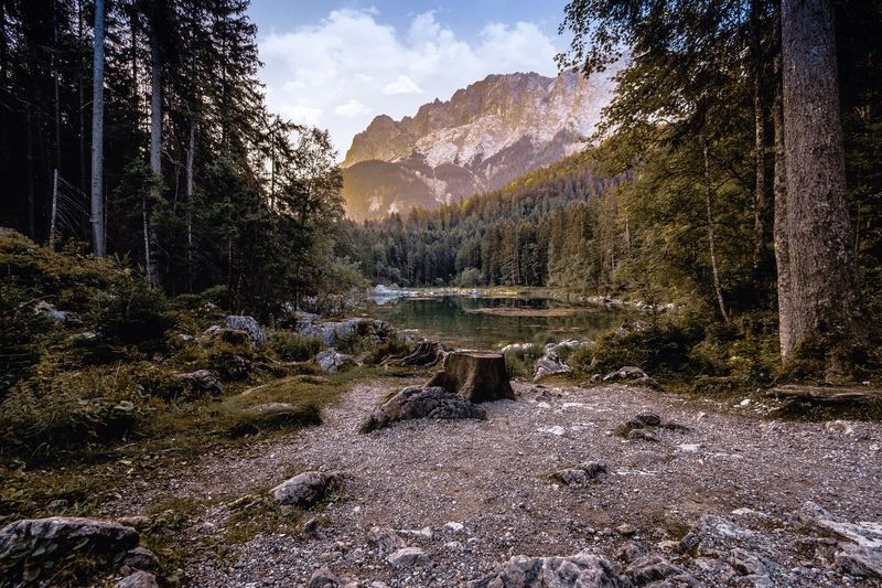 Eibsee in bavaria 🏞 Germany Bavaria Eibsee Composition Landscape HDR Tree Plant Nature Sky Mountain No People Beauty In Nature Tranquility Water Growth Land Day Sunlight Tranquil Scene Scenics - Nature Outdoors Non-urban Scene Cloud - Sky Forest
