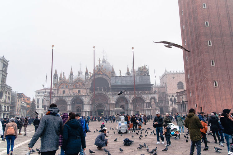 Piazza San Marco in Venice, Italy scenery Architecture Built Structure Crowd Large Group Of People Building Exterior Group Of People Real People Travel Destinations Tourism Travel History Men The Past Sky City Women Day Nature Religion Outdoors San Marco Square Venice Italy