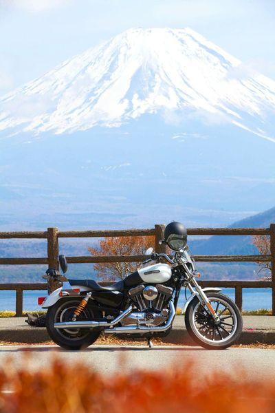 Harley Davidson Mountain Travel Destinations Motorcycles Bike Transportation Mt. Fuji Japan