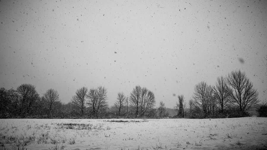 Snowy Day Snow