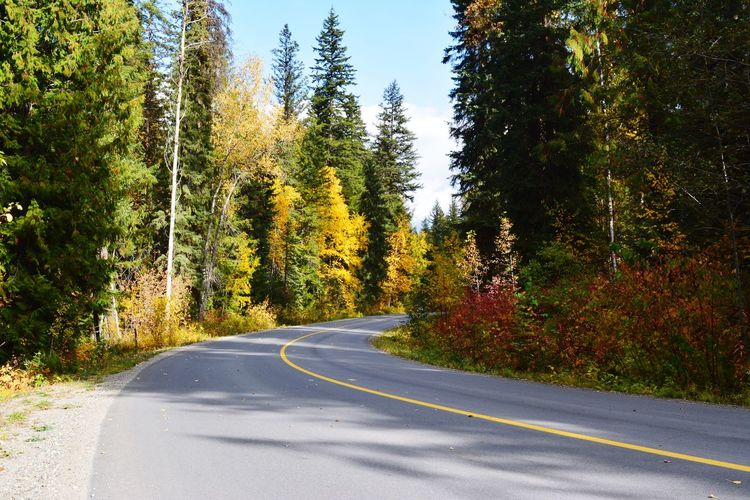 Canada Kanada Wells Gray Provincial Park Yellow Fall Herbst Herbststimmung Beauty In Nature Berge Panoramic Photography Banff National Park  Lake Louise,Alberta Tree Pixelated Road Street Sky Double Yellow Line Empty Road Yellow Line The Way Forward Leading Road Marking Dividing Line Country Road vanishing point Asphalt Mountain Road Roadways Diminishing Perspective