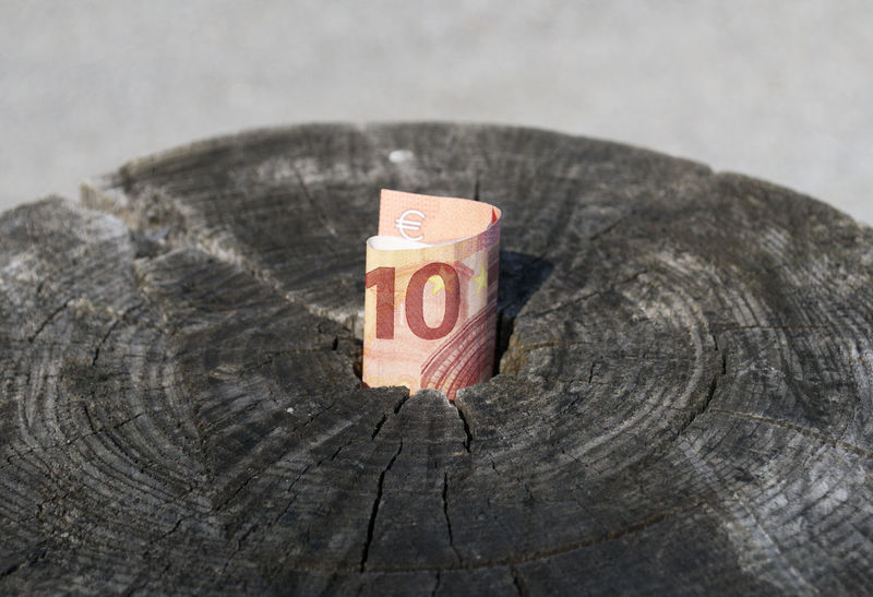 euro banknote in tree stump Banknote Bizarre Cash Close-up Day Euro Find Hide Hole Luck Money No People Opportunity Outdoors Savings Stump Ten Tree Unexpected Wealth Wood