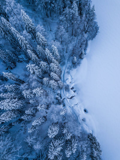 Drone  Dronephotography Drone Photography Droneshot Blackforest Snow Footsteps Footpath Blue Backgrounds Window Full Frame Textured  Water Close-up Snowflake Snowing Winter Snowfall Covering Snow Covered Cold Cold Temperature EyeEmNewHere
