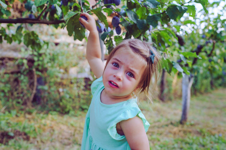Portrait of cute girl standing by tree