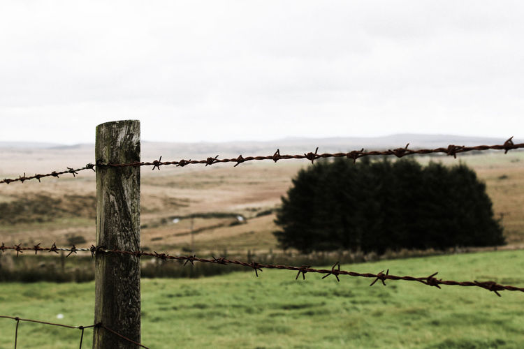 Fence Security Protection Safety Barbed Wire Grass Boundary Sky Outdoors Tranquility No People Exclusion Nature Cloud - Sky Ranch Rural Scene Wooden Post Forbidden Day Devon UK Scenics Dartmoor Close-up Uk Beauty In Nature