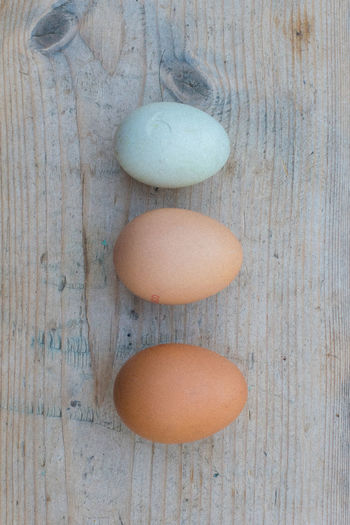 Just 3 simple smooth cool eggs on an original worn old scrubbed pine table. The smallest egg is a wild duck egg found on an afternoon's ramble over the fields. Eggs are a simple staple food and can remind us to seek out a more simple way of living, of spending time outdoors and with nature, as often as we can. 3 Beige, Green And Blue Brown Egg Brown, Close-up Cracked Egg Day Duck Egg Duck Egg Blue Egg Eggs Healthy Eating Indoors  Knots Knots And Grain Knots In Wood Natural Natural Light Natural Pattern No People Old Scrubbed Pine Vintage Table, Wild Duck Egg Wood Wood Grain,