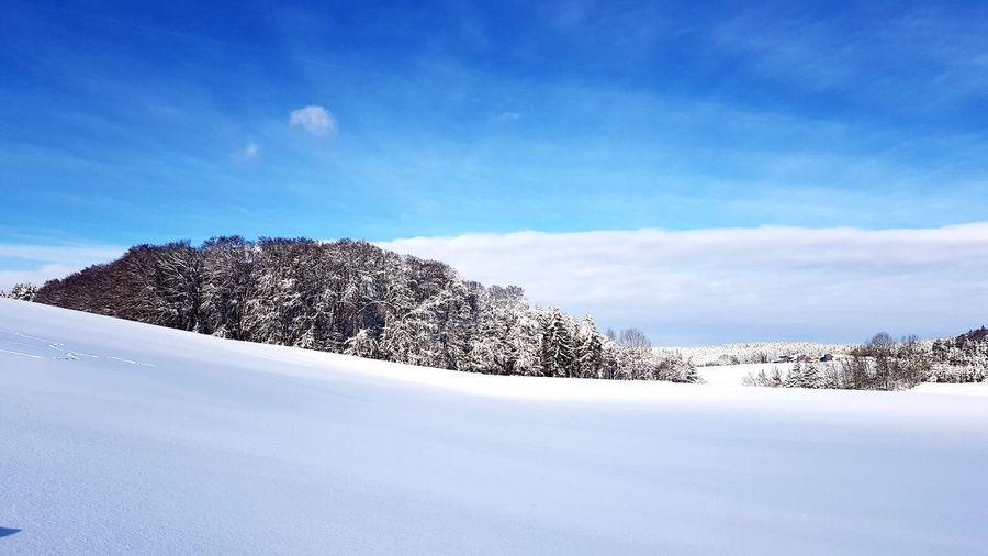 Silence!! Snow