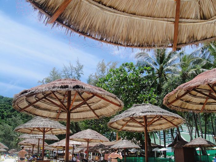 Thatched Roofs Against Trees At Tourist Resort