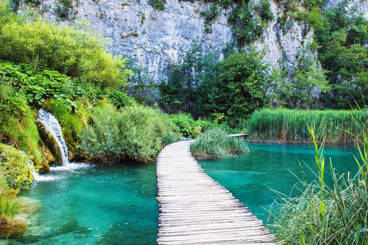 Tranquility Tourism Beauty In Nature Tree Plant Scenics Day Water No People Croatia Travel Mountain Rock Lake Reserve Plitvice Plitvice National Park Plitvicelakes Plitvickajezera Plitvicelake Plitvickejezera Waterfall Plitvice Lakes National Park Plitvicka Jezera Nacionalni Park Mountain Peak