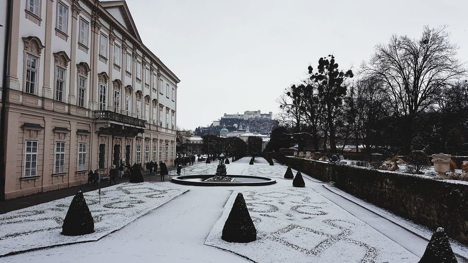 Cloudy Day Salzburg Schloss Mirabell View Shades Of Winter Snow Winter Cold Temperature Outdoors Day Tree