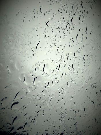 Louisiana Rainy Day Rain☔ Rain Drops Natural Beauty Gloomy Weather Gloomy Beautiful Nature Eye Of Ky