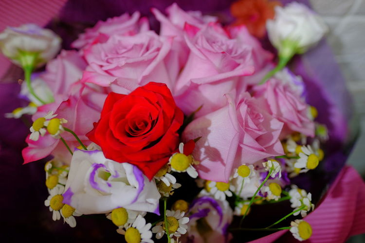 High angle view of rose bouquet