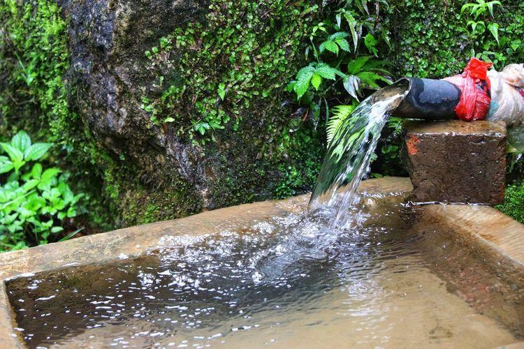 Water splashing in fountain against trees