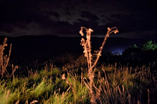 Illuminating firelight Nature Growth Tranquility Field Beauty In Nature Grass Scenics Outdoors Plant Tranquil Scene Rural Scene No People Sky Horizontal Night Devil's Pulpit Scotland Campfire
