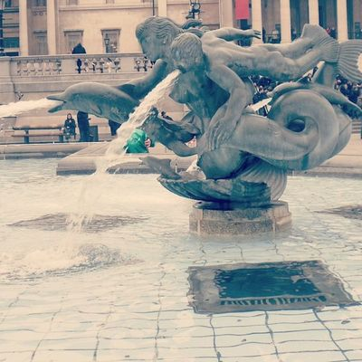 Beauty can be seen in all things, seeing and composing the beauty is what separates the snapshot from the photograph. Jinius Eagleyesphotography Trafalgarsquare London