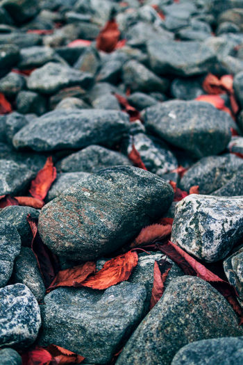 Full frame shot of rocks on pebbles