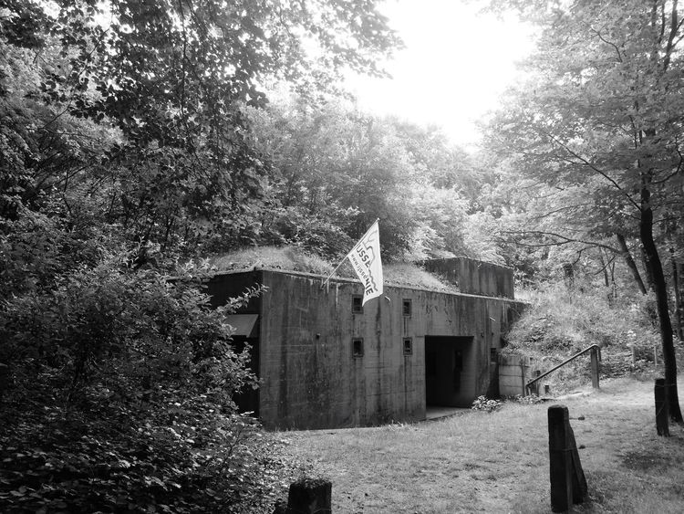The command bunker, part of the 'IJssellinie'' cold war defence line in Olst. Tree Built Structure Architecture No People Day Building Exterior Outdoors Nature Olst Bunker Cold War Defence Taking Photos Eye4photography  Blackandwhite Black And White Monochrome Forrest Nature