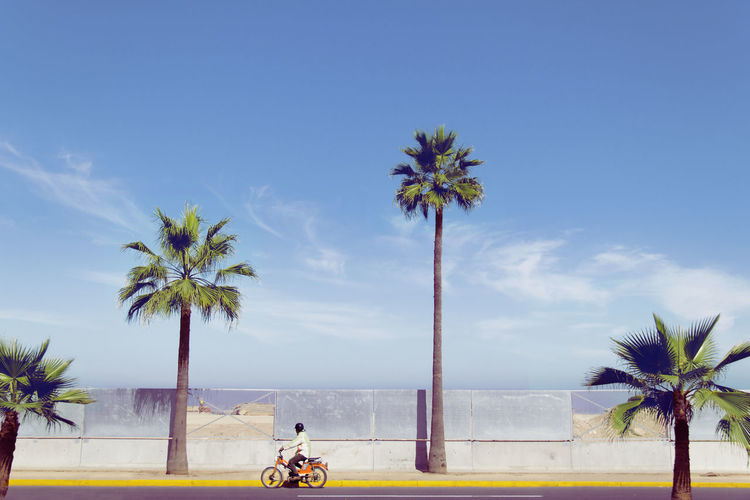 Man riding motorcycle against palm trees
