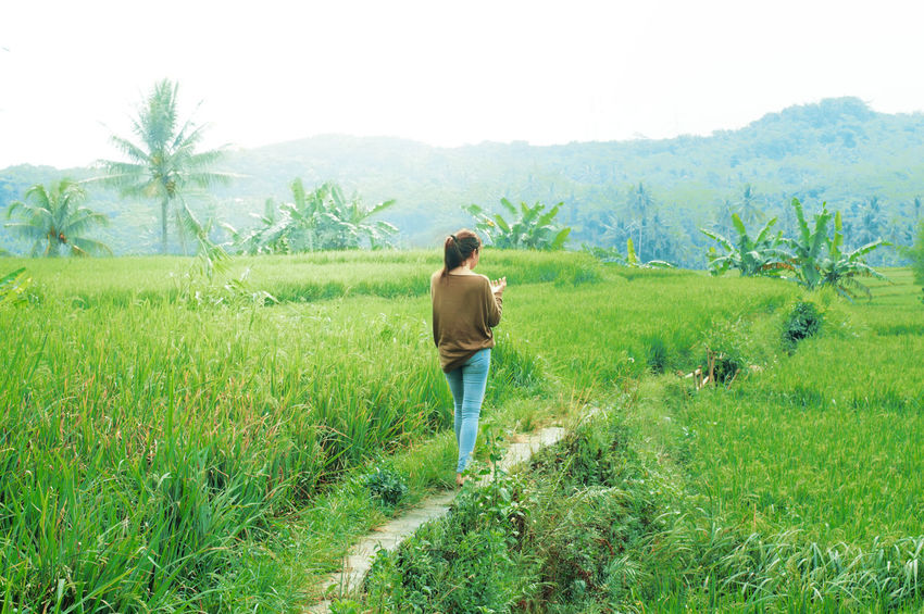 Village View People And Places Landscape Village Tranquil Scene Mountain Walking Scenics Green Color Tranquility Growth Green Landscapes People Rice Field Greenery Nature