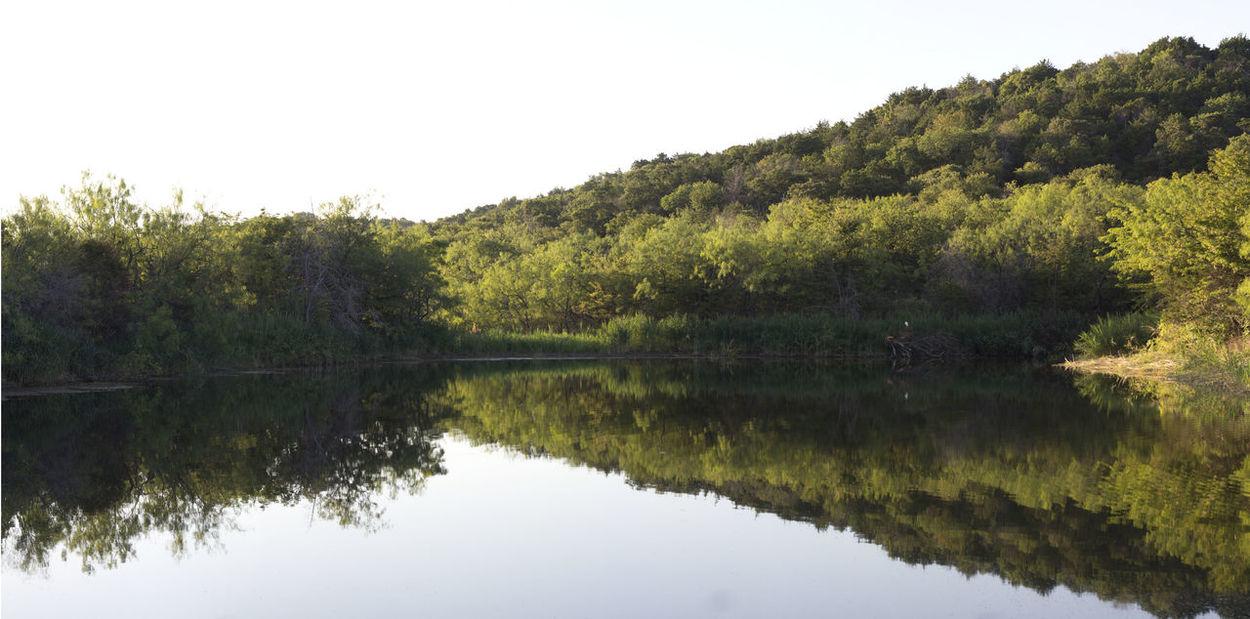 Cattail Pond Cedar Ridge Preserve Hiking Photography Hikingadventures