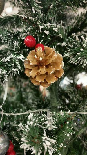 Christmastree Christmas Tree Christmas Lights Noel2015 Marry Christmas Popular Photos Christmastime Christmas Decorations EyeEm Gallery Eyemphotos EyeEm Best Shots EyeEm Best Edits