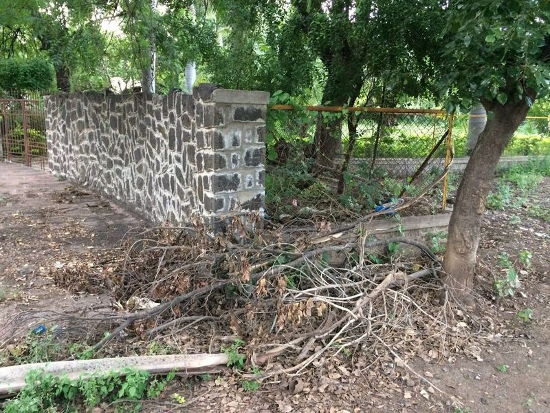 Broken Branches Compound Fence Green Color IPhone 5S Nature No People Outdoors Safety Stone Wall Tranquil Scene